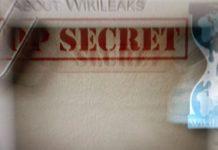 wikileaks turkey