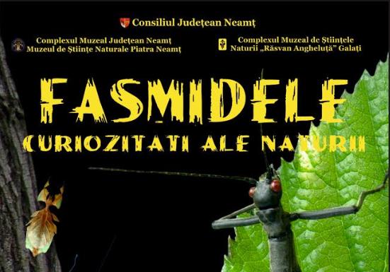 fasmide